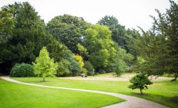 Open Garden Day – Part of Bournville Heritage Open Day