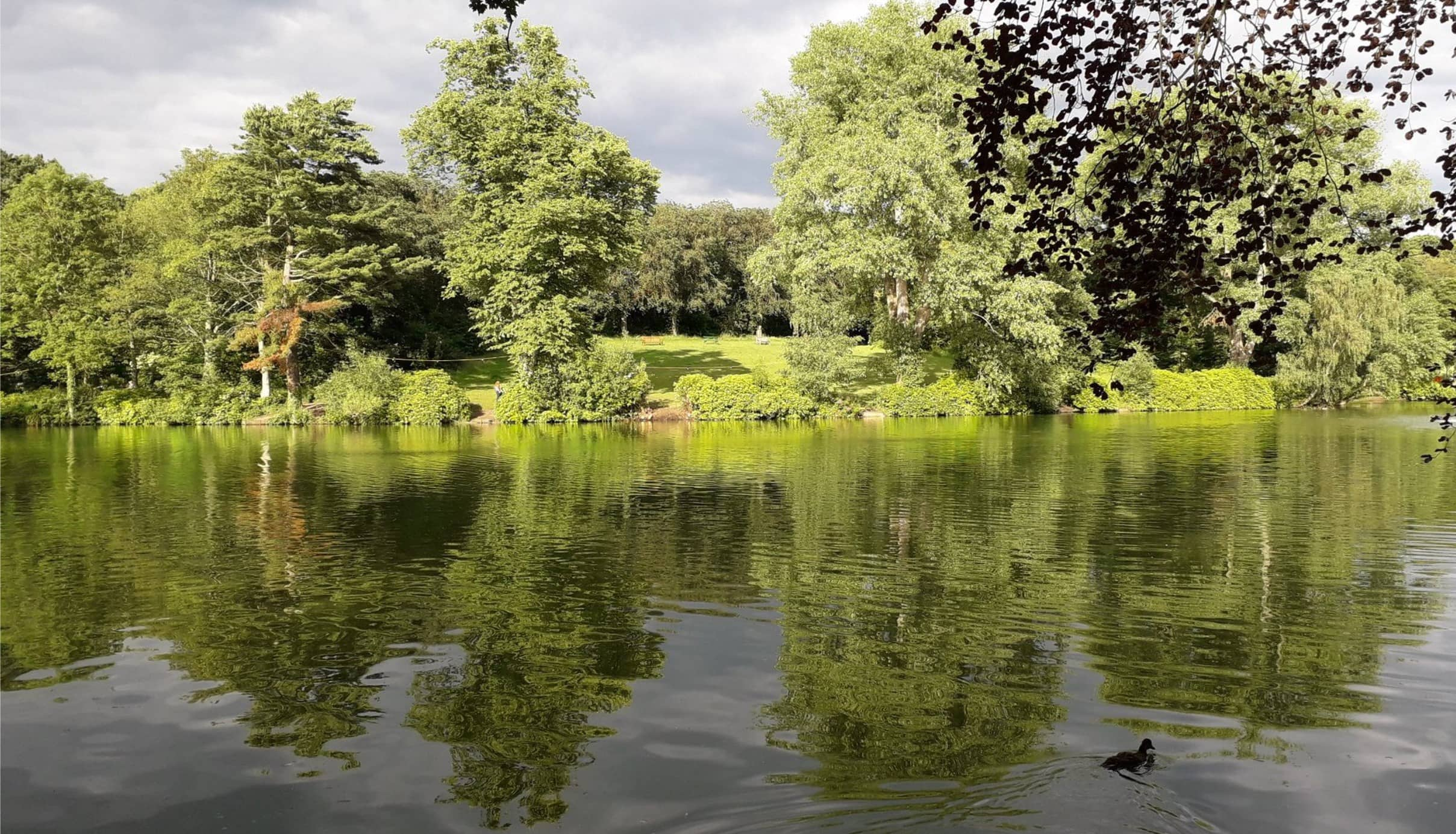 moseley-park-pool-1160x665